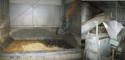 hygenisation pit biogas plant Beck (Germany)