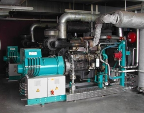 Biogas Cogeneration